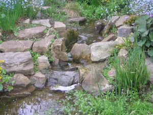A gentle stream enters the pond...