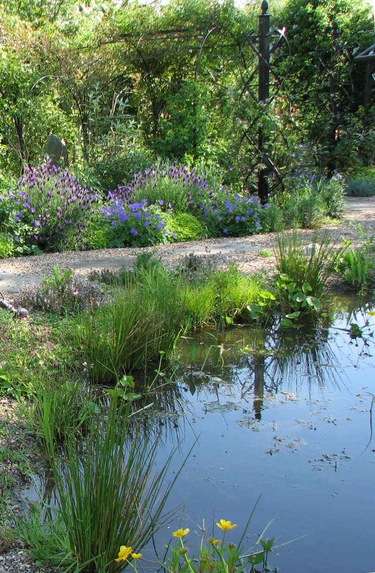 Wildlife ponds construction norfolk suffolk cambridgeshire - The pond house nature above all ...