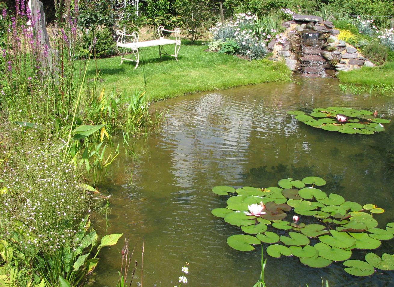 Wildlife Ponds Construction - Norfolk, Suffolk ...